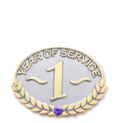 One Year Service Safety Lapel Pin with military clutch - A5
