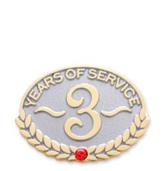 3 Year Service Safety Stock Lapel Pin with military clutch - A6