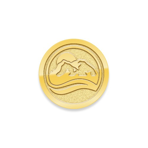 "1"" 10k gold lapel pin"