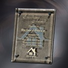 "7"" x 9"" Bronze Luxury Award - 4523-79"